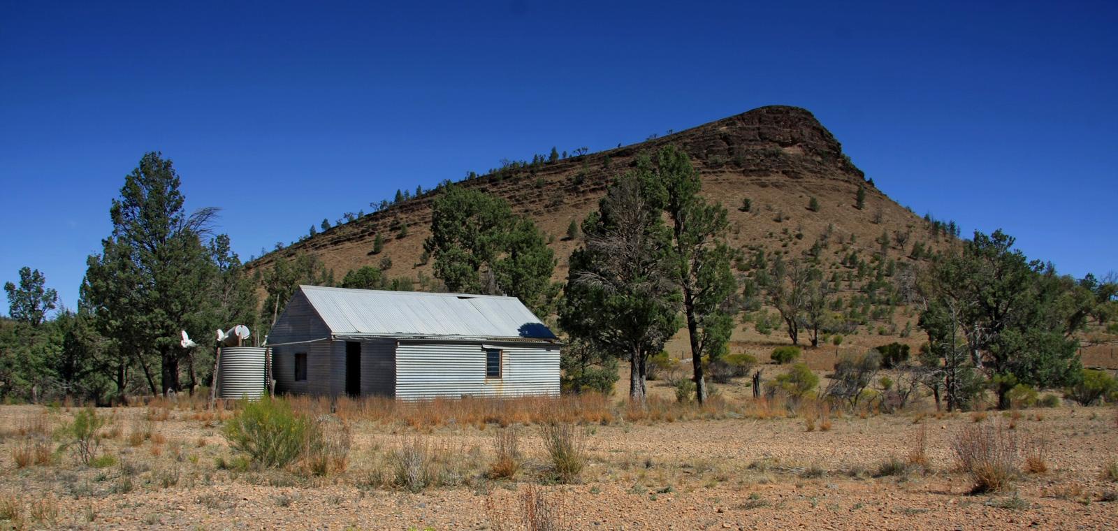Crutching shed.jpg