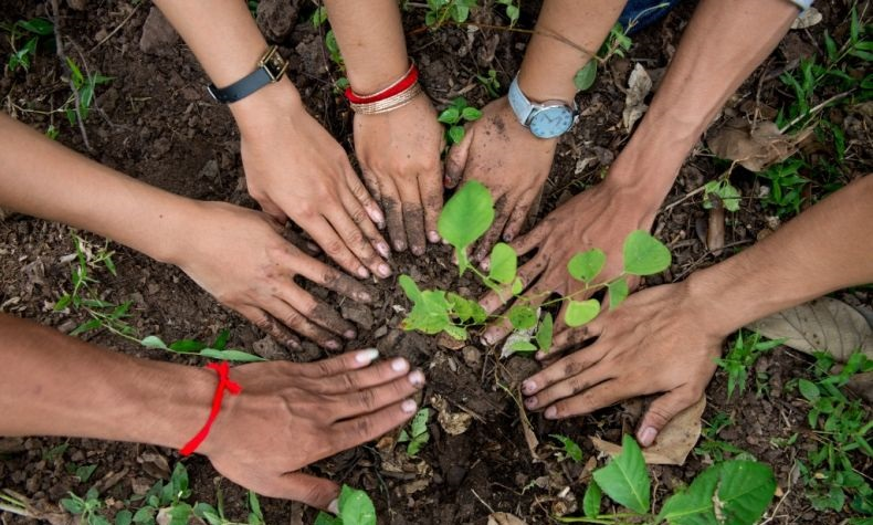 Tree-Planting-Cambodia-2014-Luc-Forsyth-50-1024x683-790x527 v2.jpg