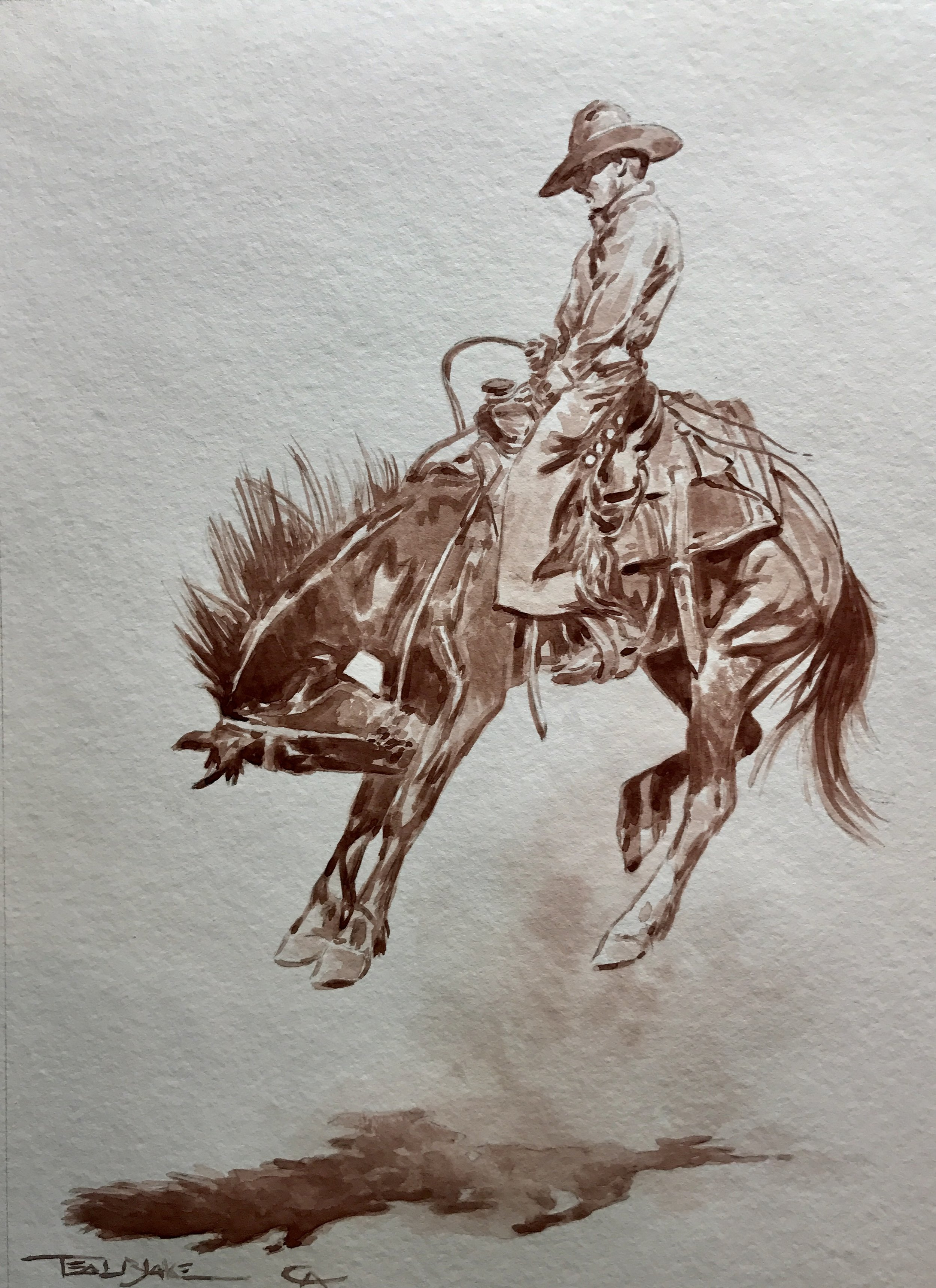 Bucking Horses -