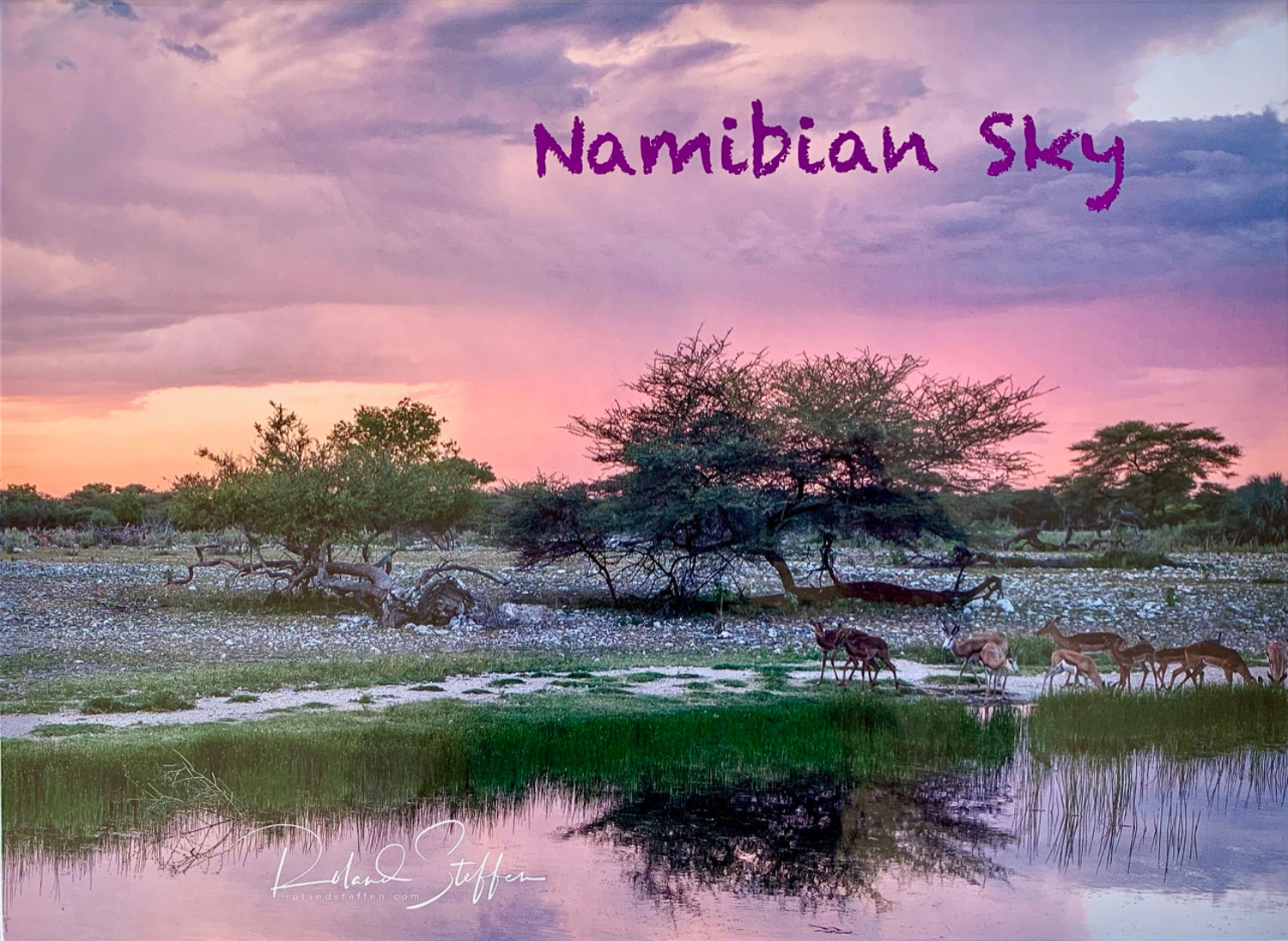 Namibian Sky - 2019 - Pictures of Namibia's landscape.Photographs: Roland Steffen