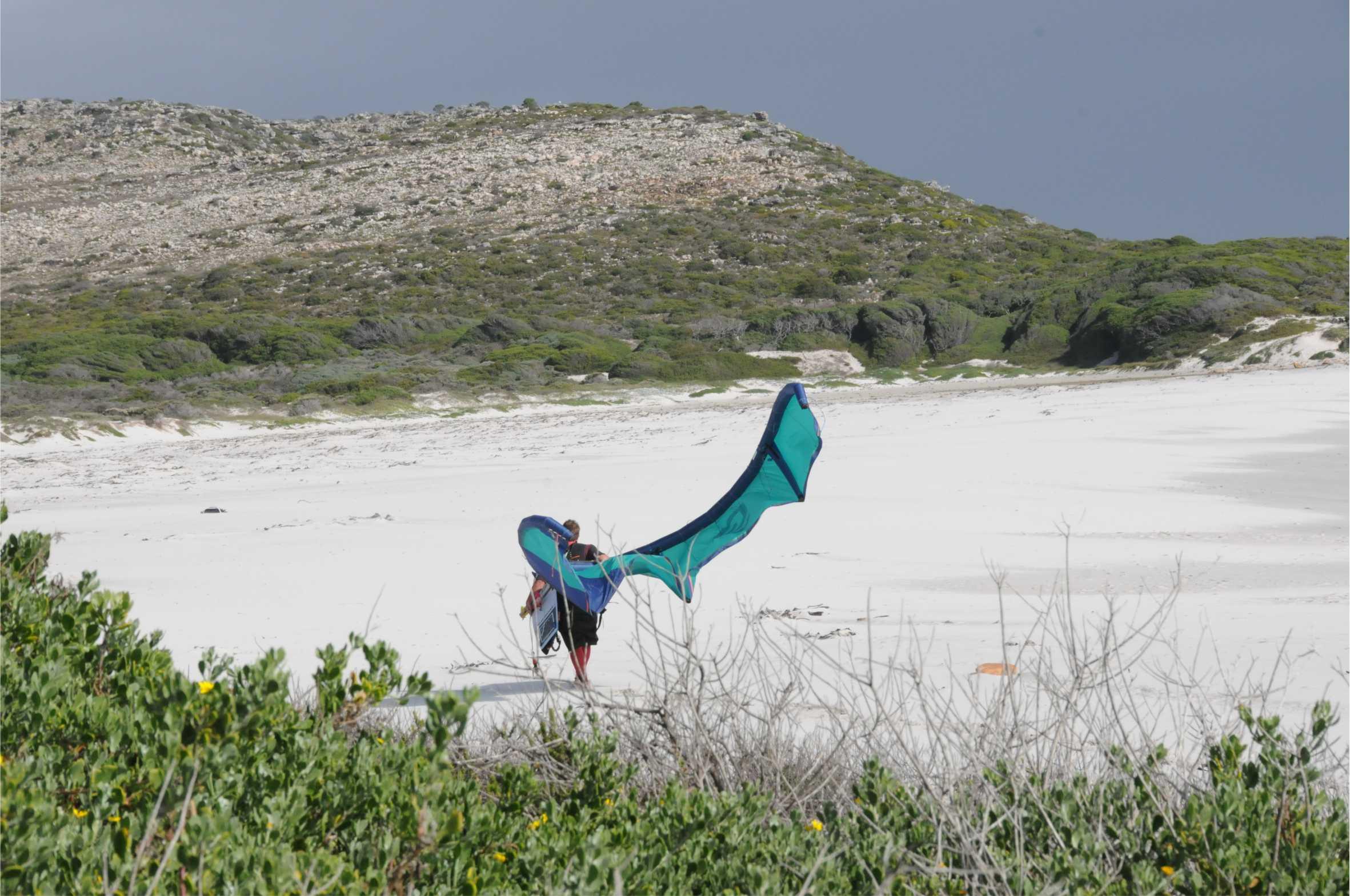 ullman kite life.jpg