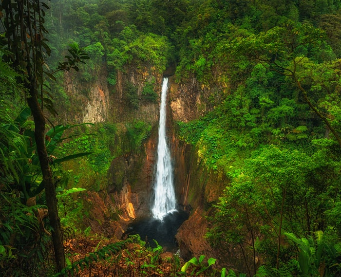 The Catarata del Toro waterfall cascades down from a height of 270 feet! (82 m)