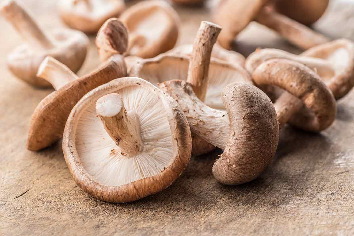 Shiitake-Mushrooms.jpg