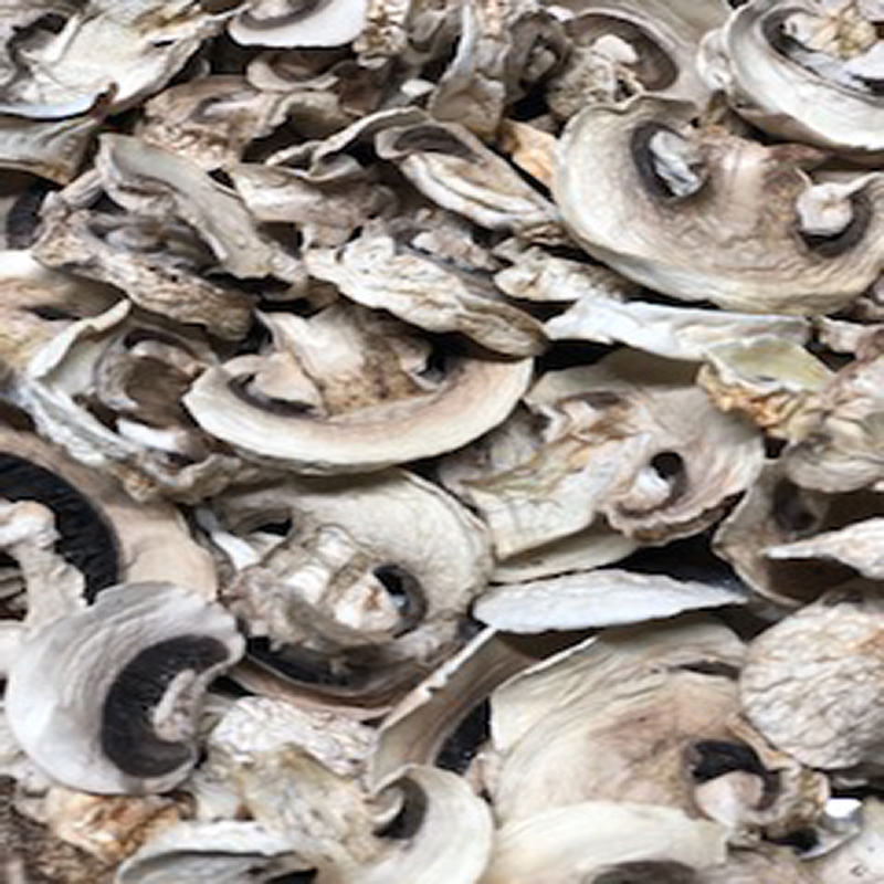 Dry Button Mushrooms - Product Info