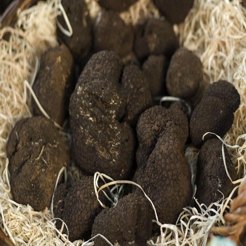 Frozen Black Summer Truffles - Product Info