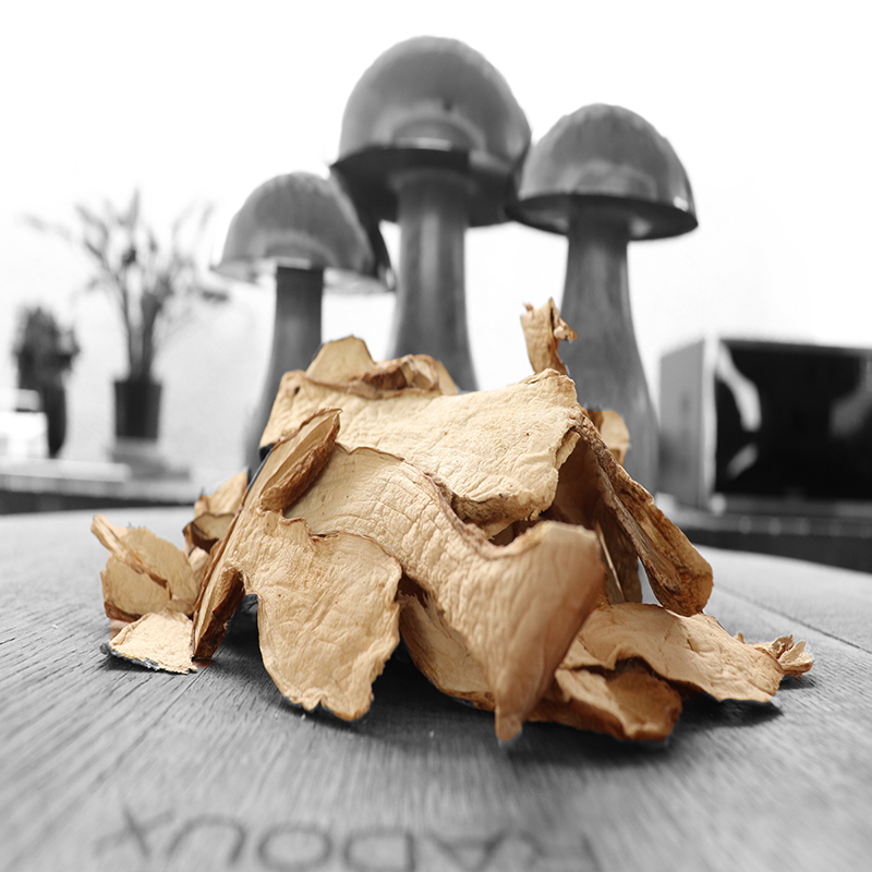 Dry Porcini Photo 1 (FW).jpg