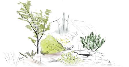 Planting_Drawing.jpg