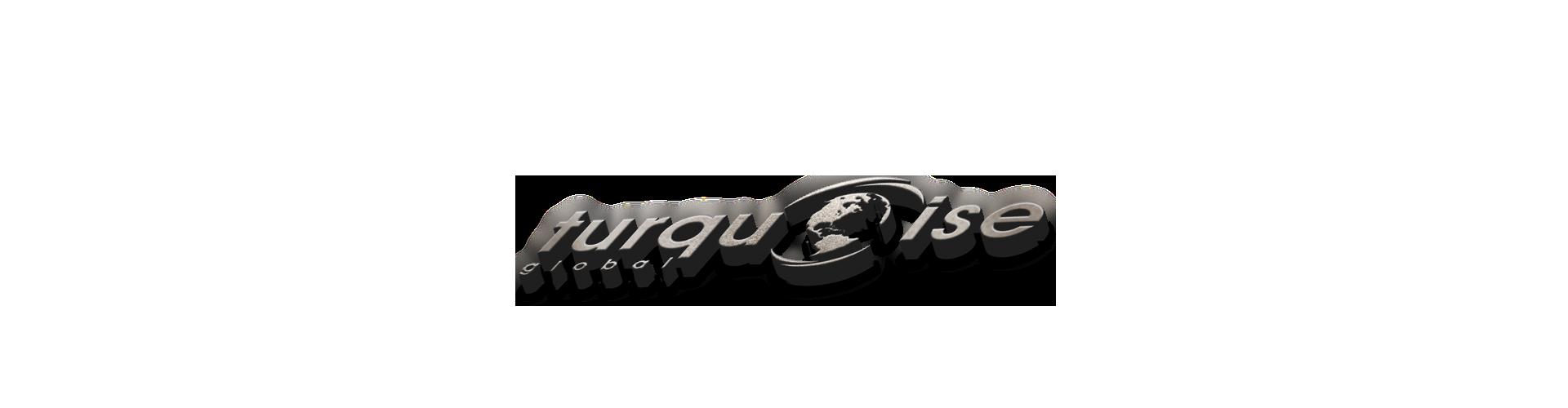 turquise logo.png