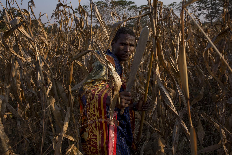 "experience "" Twende, Rafiki! "" a visit with the Maasai of Arusha, Tanzania."
