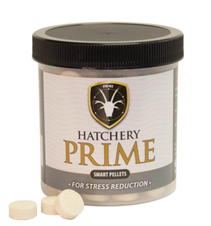hatchery-prime-jar.png