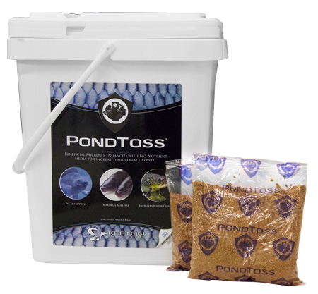 PondToss-withBags.jpg