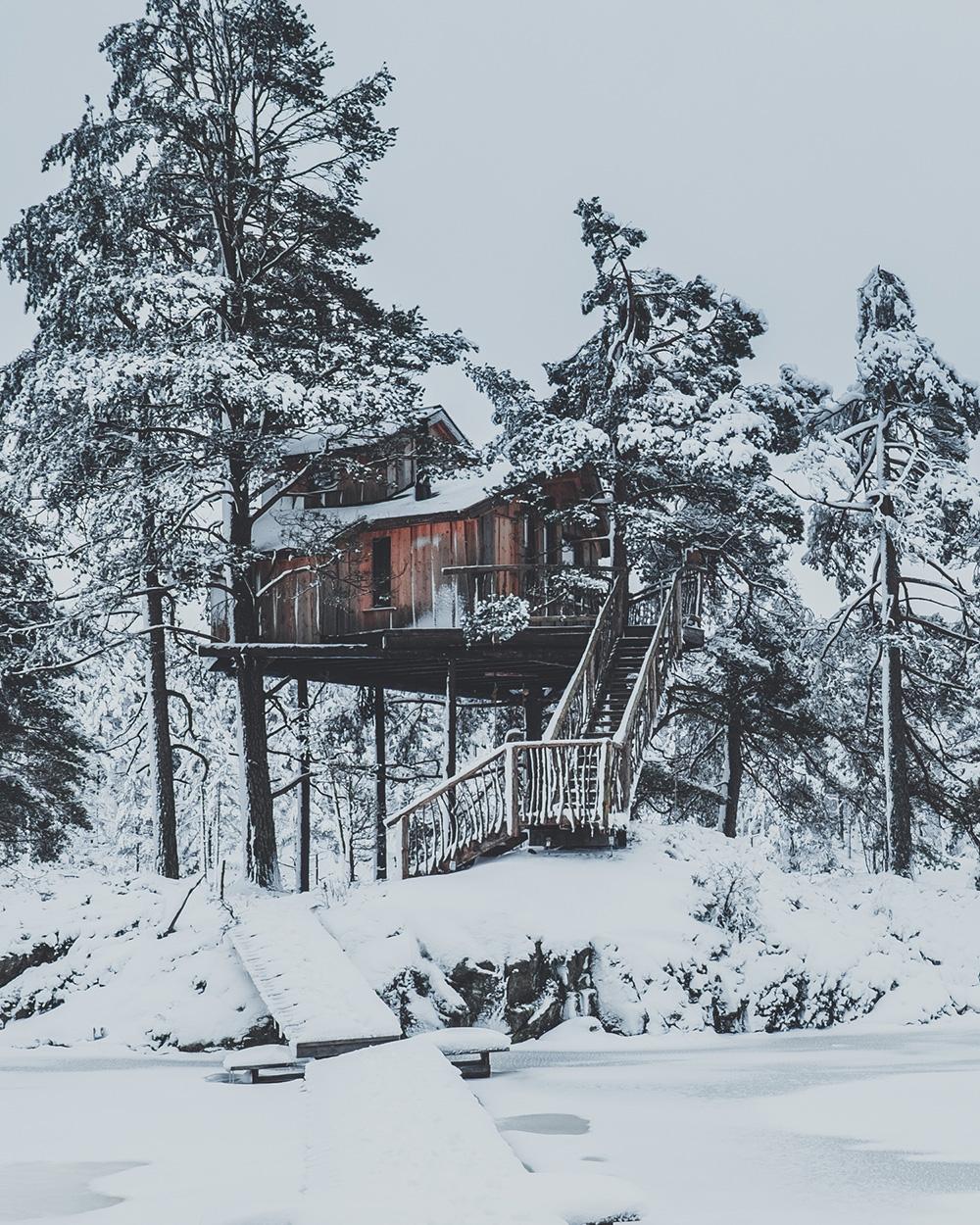 tretopp hytte mats dreyer fotograf natur overnatting.jpg