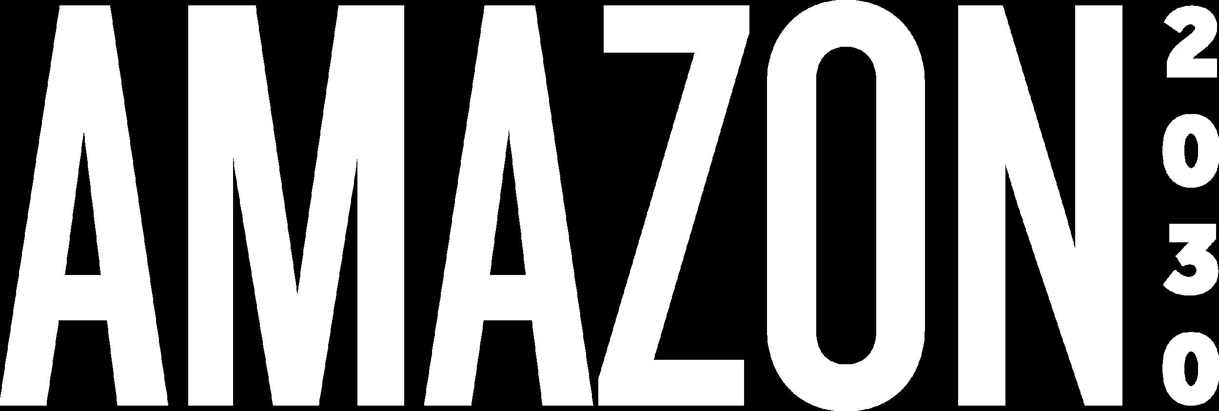 amazon2030_3.png
