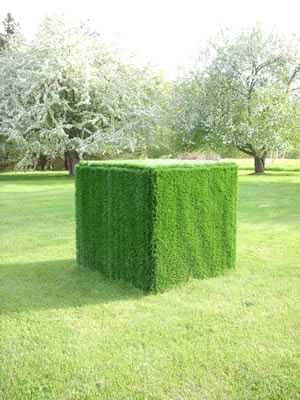 Lawn Cube - Artificial TurfApproximate Dimensions: 4' x 4' x 4'