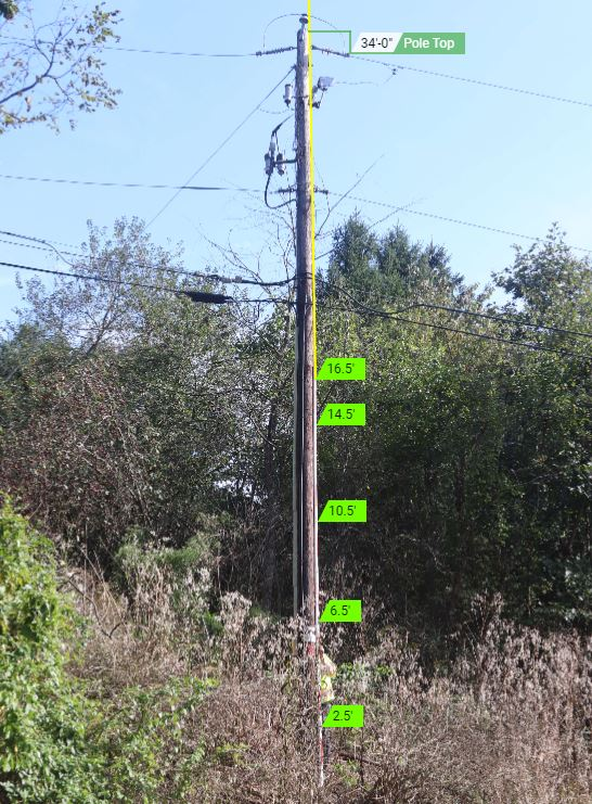 a height shot of a telephone pole where the base of the pole is covered by bushes