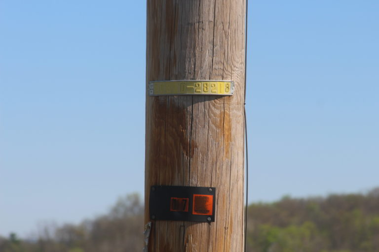 a shot of pole tags that are used for data collection and processing