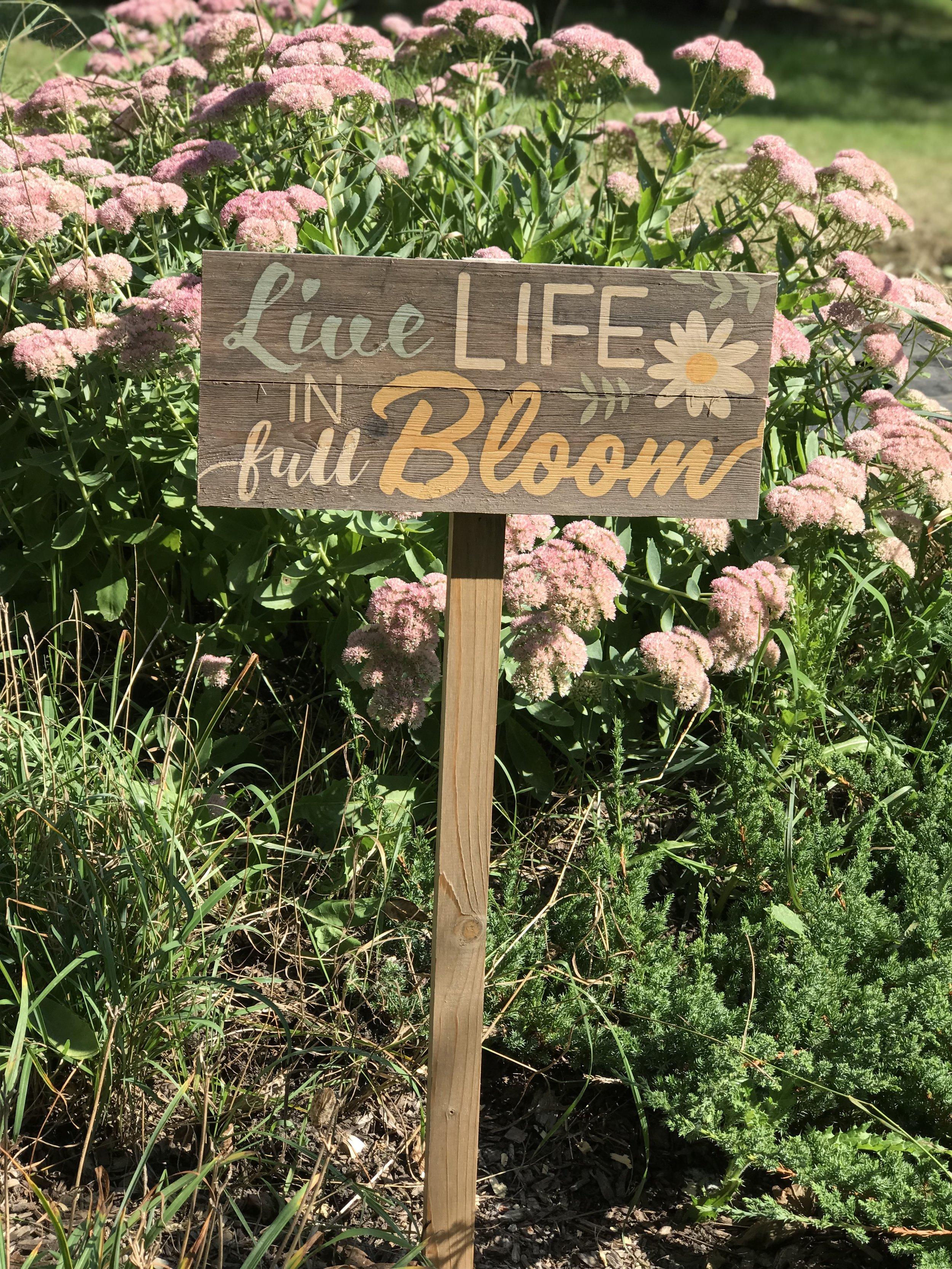 Pure Bloom Flowers - Live Life In Full Bloom.jpg