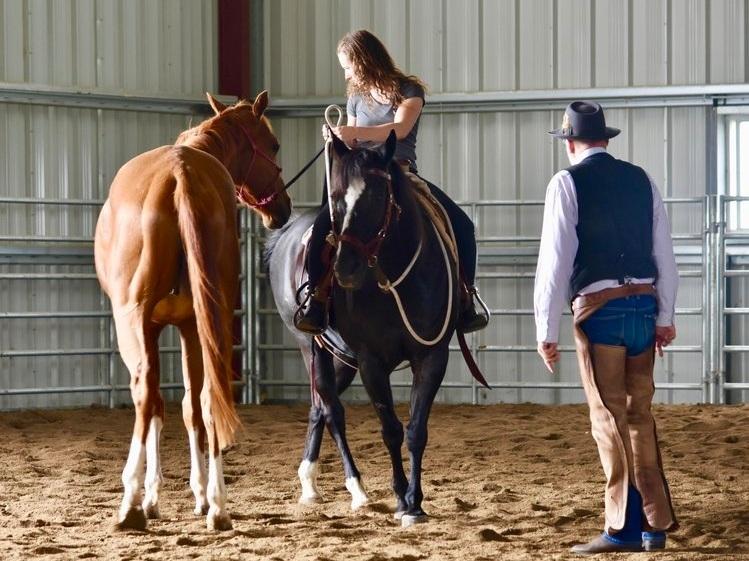 Horse Training | St. Paul