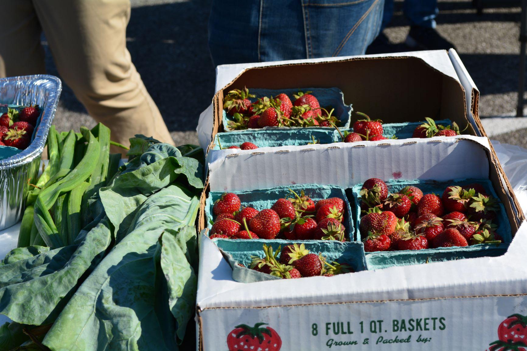 greens-strawberries.JPG
