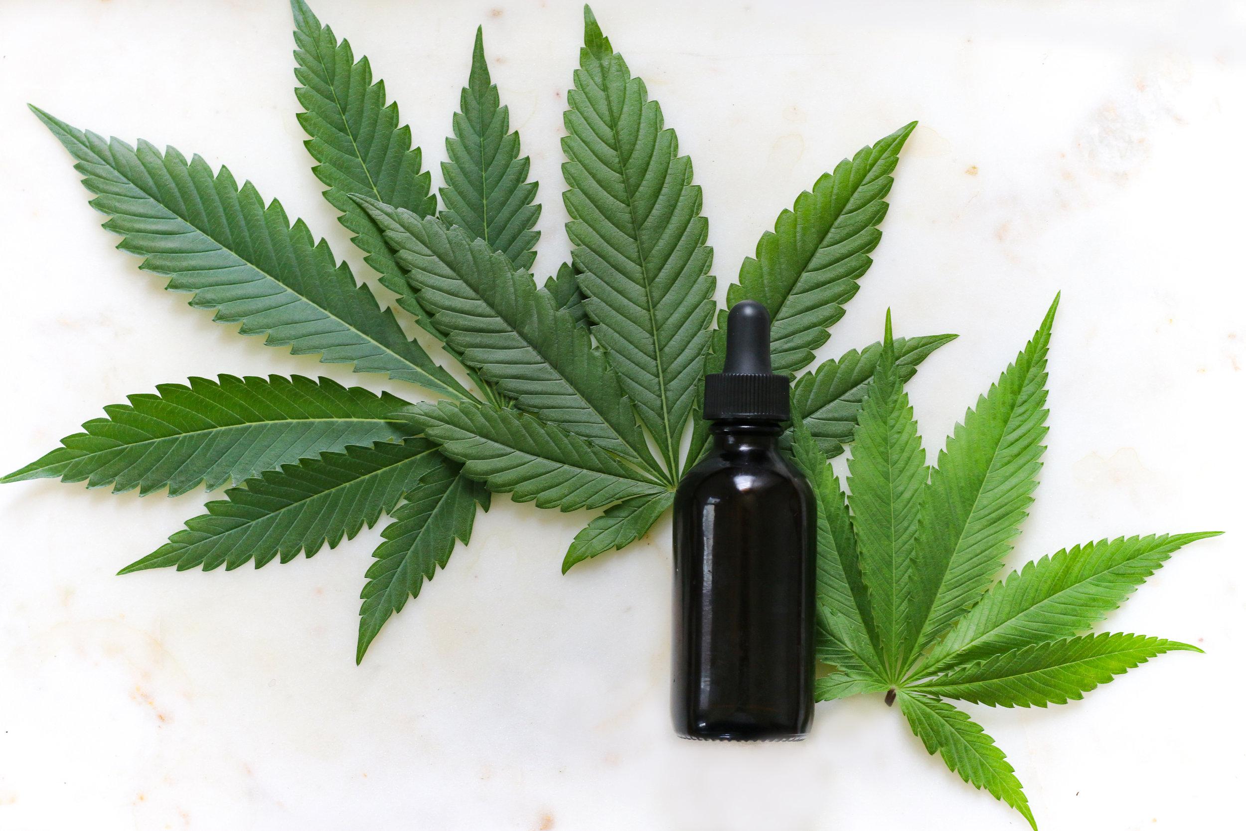 Marijuana and CBD Oil