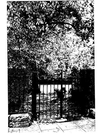 Old_gate-450x576.jpg