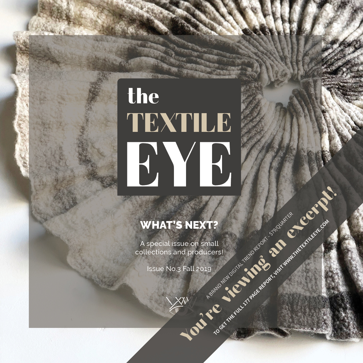 The Textile Eye Issue 2 Summer 19 Excerpt LR21.jpg
