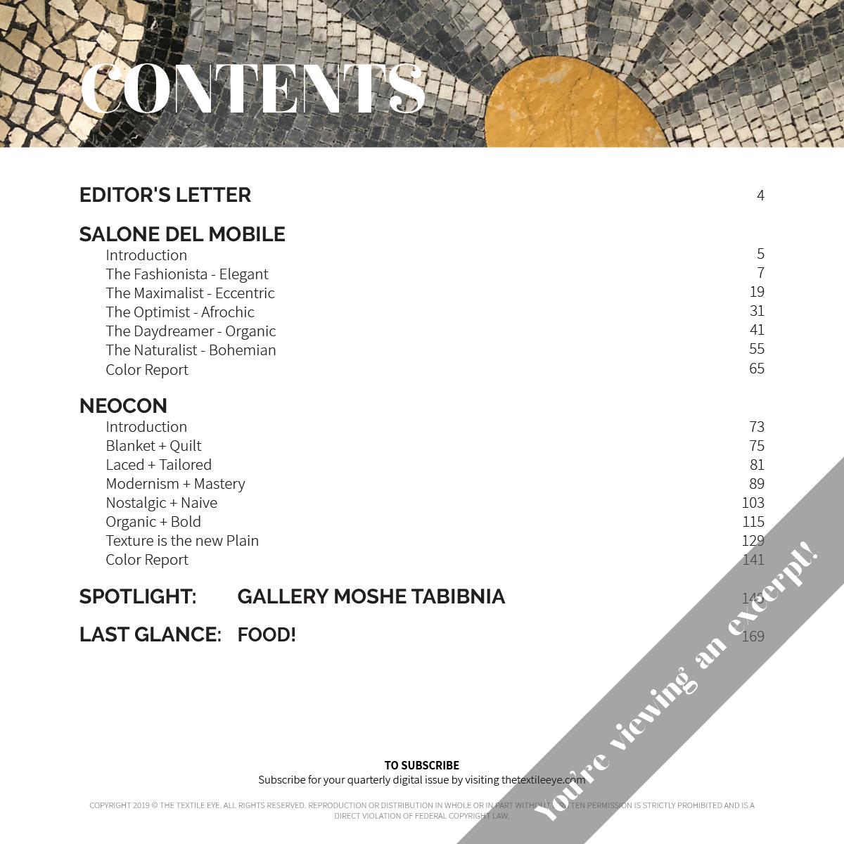 The Textile Eye Issue 2 Summer 19 Excerpt LR2.jpg
