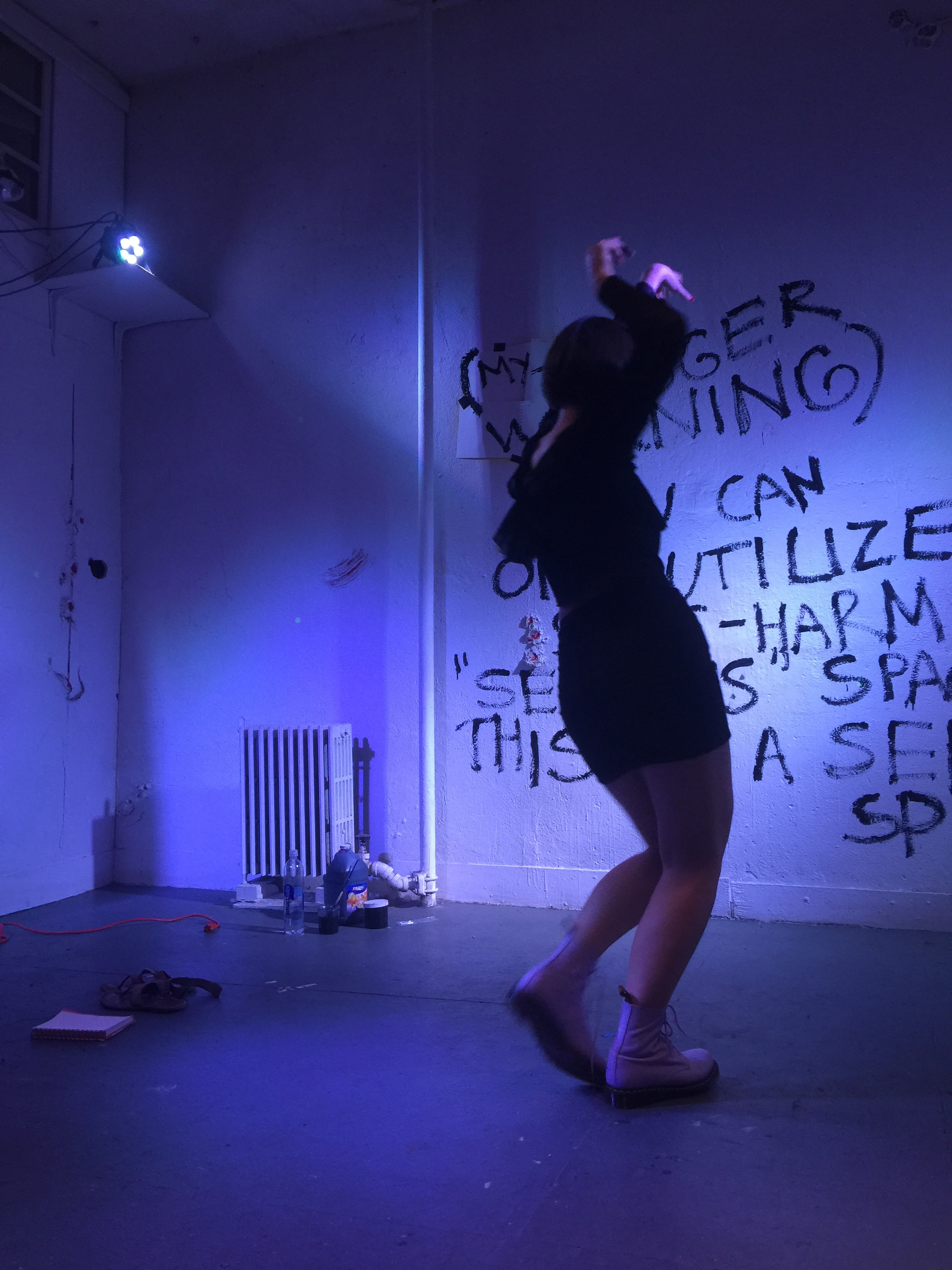 Polina Riabova, Trigger Warning, 2018, Panoply Performance Laboratory, photo credit Geraldo Mercado (13).jpg