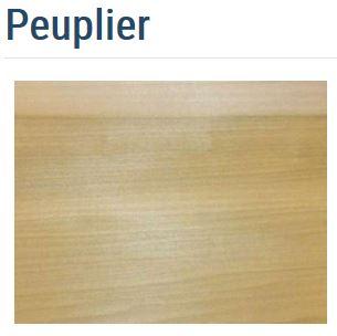 SI Bois Peuplier.JPG