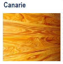 Canarie / Canary