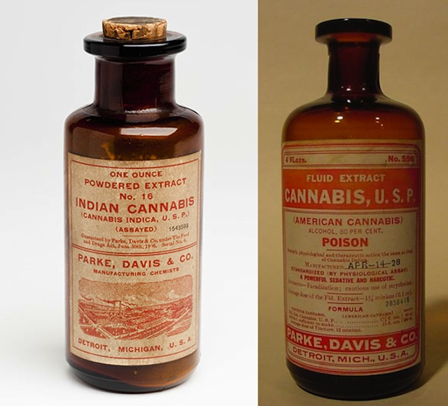 Traditional Cannabis Extracts.jpg