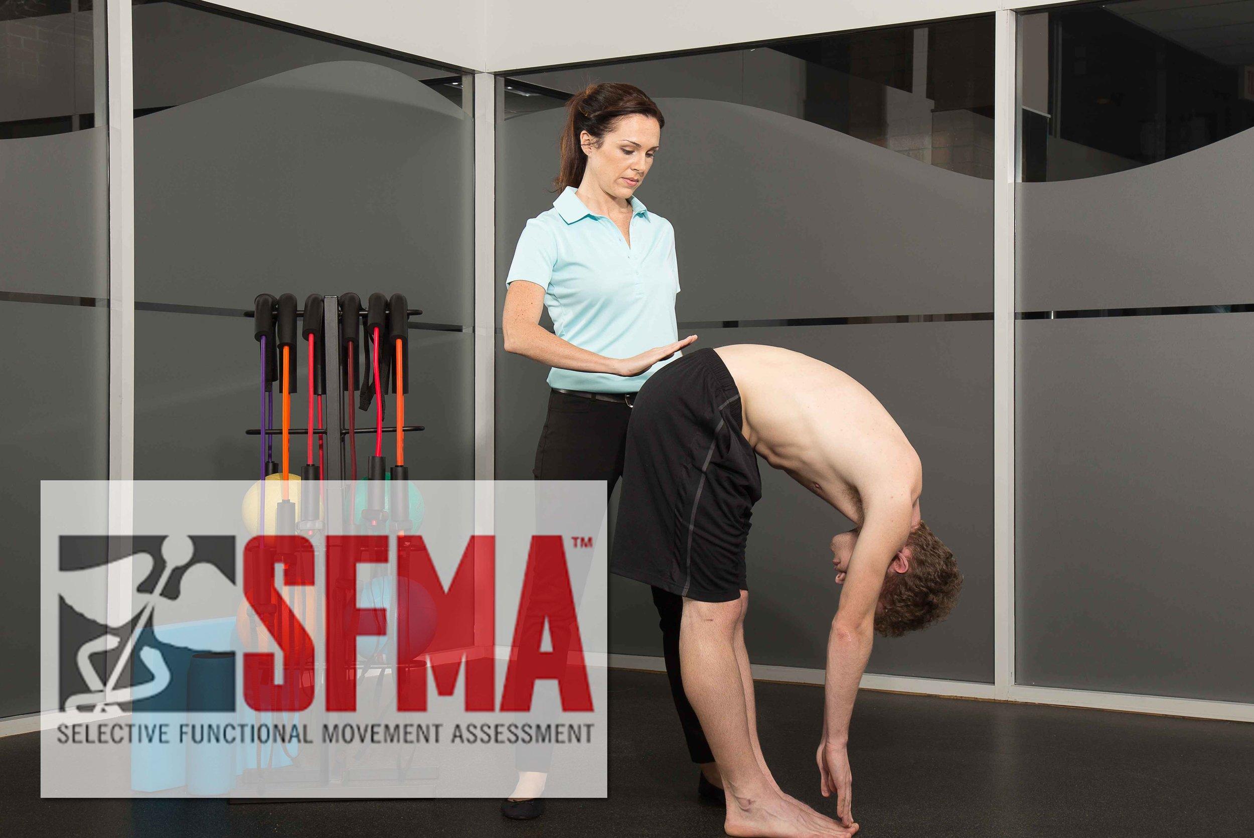 sfma logo pic.jpg