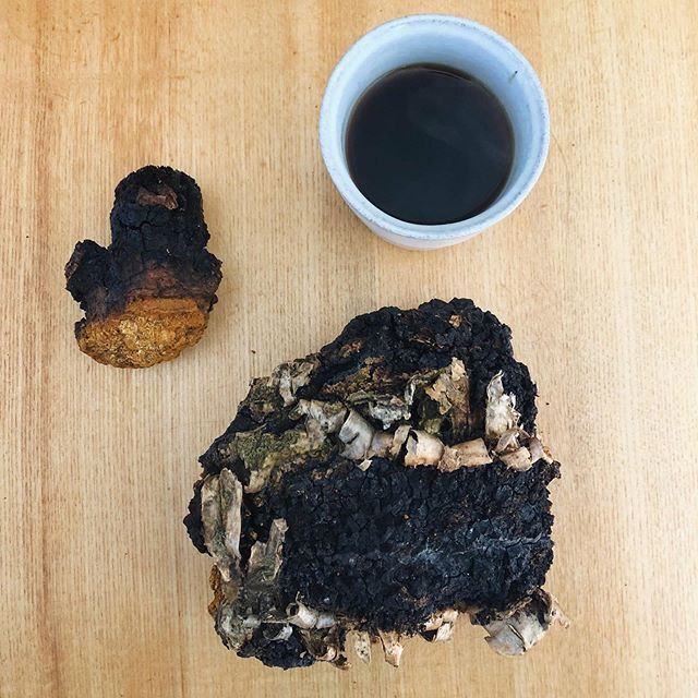 When your lovely friends from far away send you chaga in the mail. ☕️ . . #chaga #northernmaiden