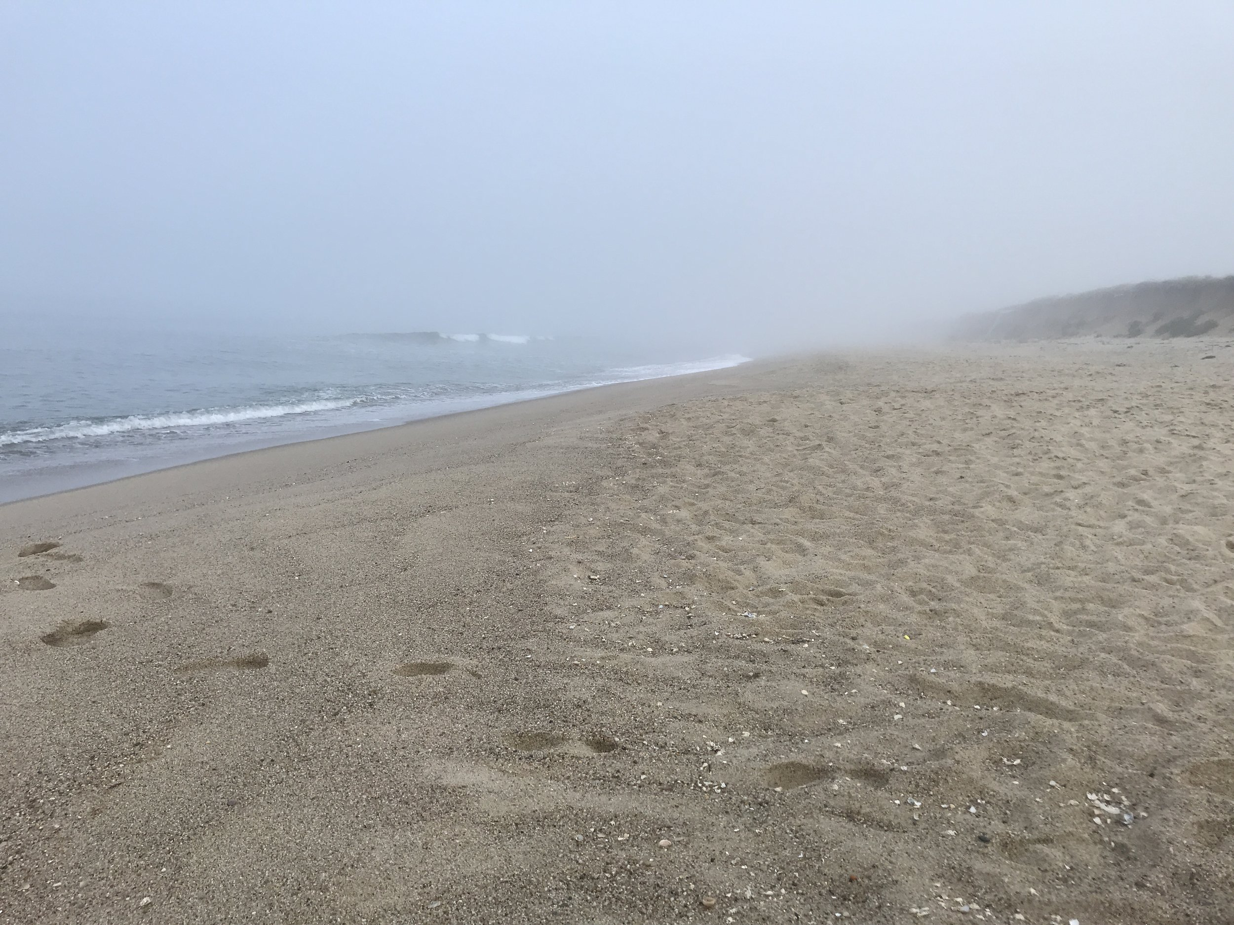 Bunny's Beach—not a soul in sight! 6:50 AM. ©betsygibsondesign