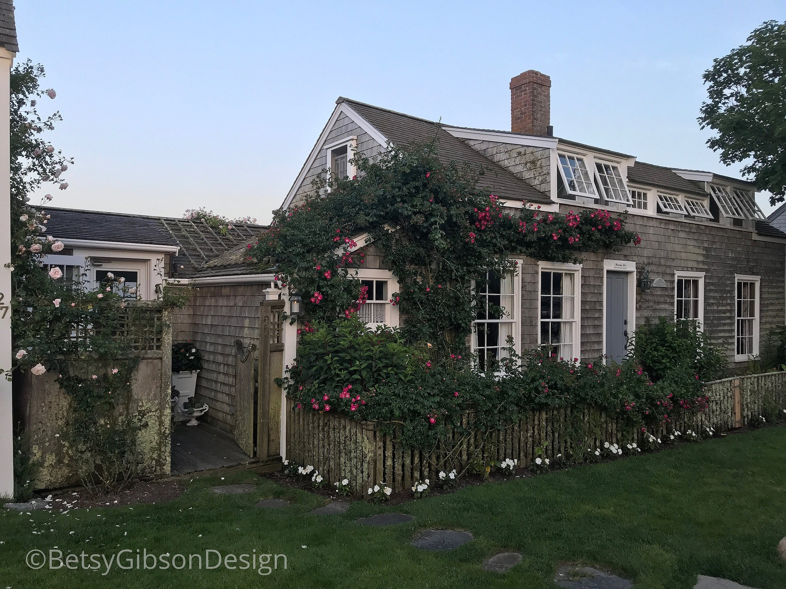 The roses are climbing in Sconset. My favorite house. Nauma 1676. July 2018. ©betsygibsondesign