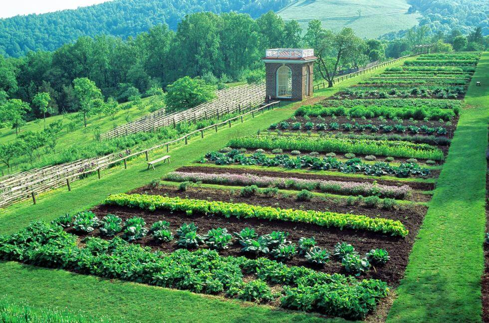 Monticello Vegetable Garden © allentucklandscaping.com