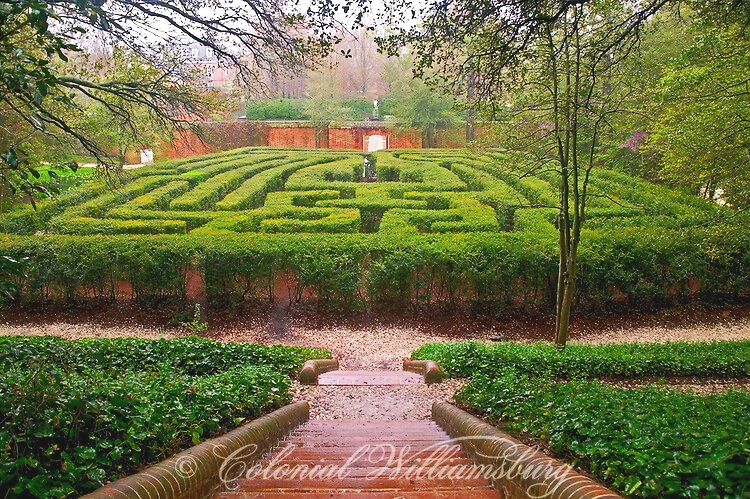 A View of the Maze.©Colonial Williamsburg Foundation 2010.