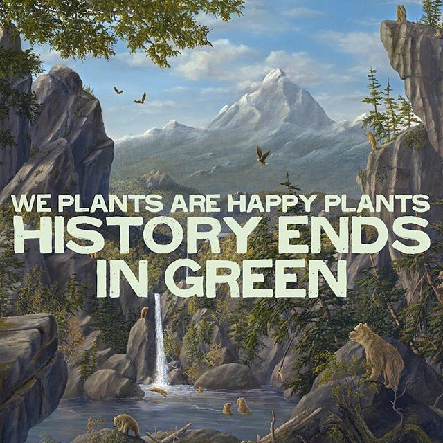 Check out my new album on Spotify (or anywhere else). Link in bio. Thanks for your support! #weplantsarehappyplants #music #albumcover #TerenceMcKenna
