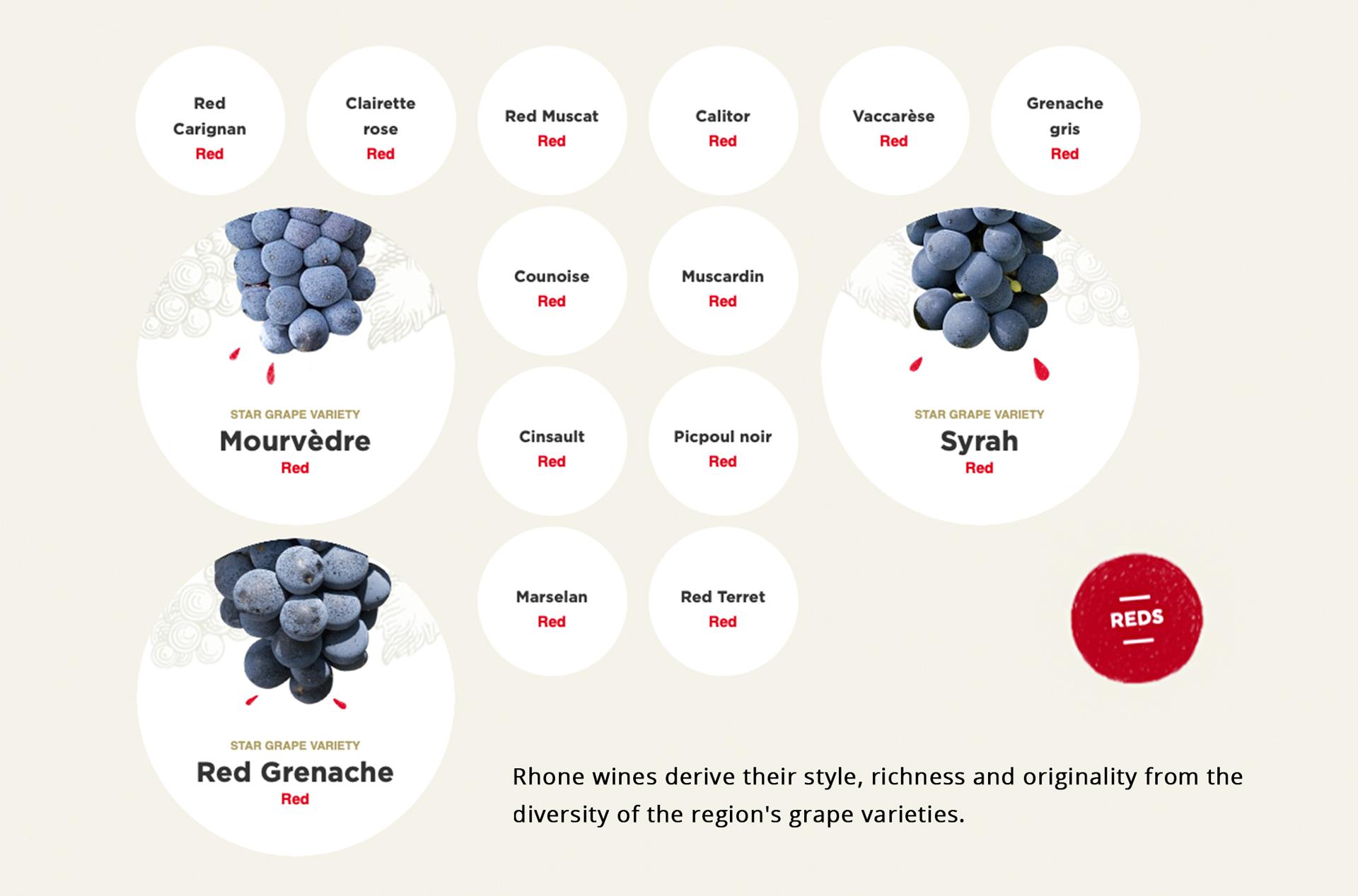 wine-varietals_red.jpg