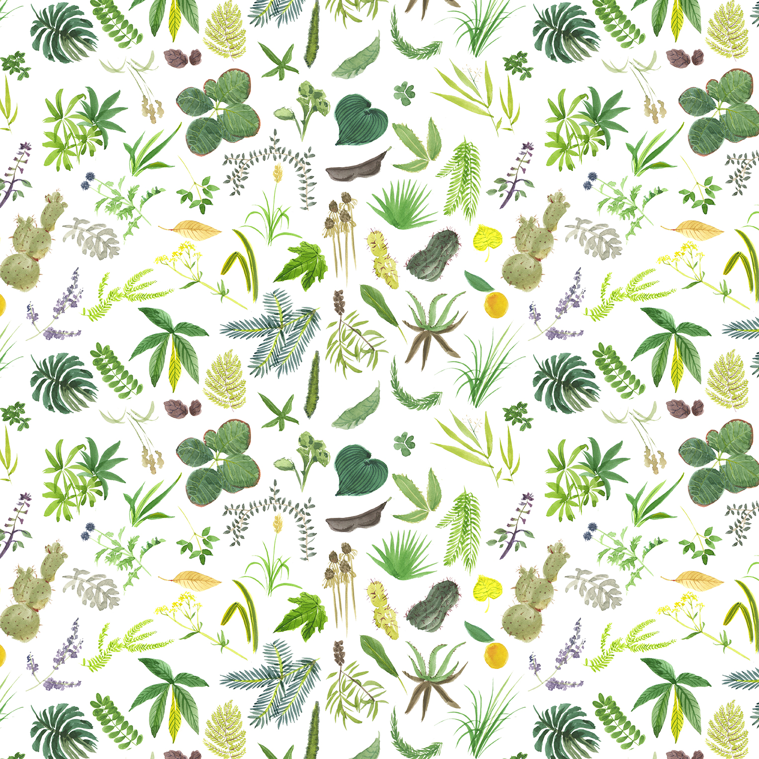 11.botanical pattern.jpg