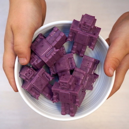 blueberry-coconut-gummies copy.jpeg