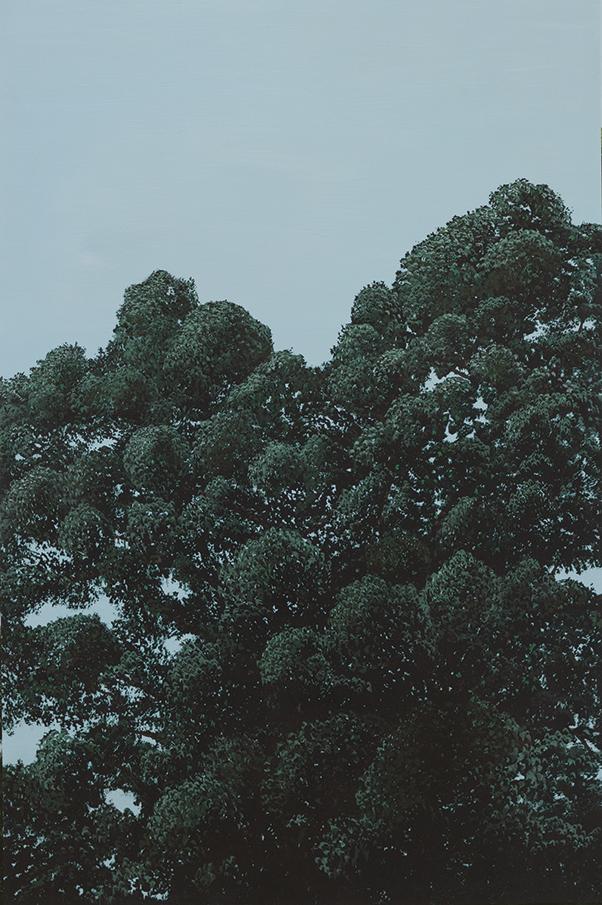 Treepresentations-2.jpg