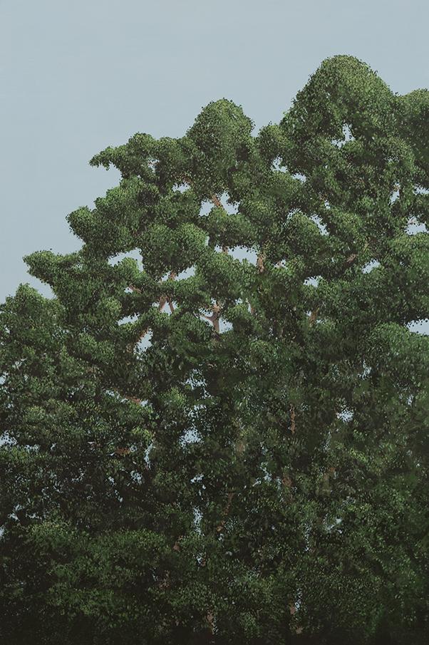 Treepresentations-1.jpg