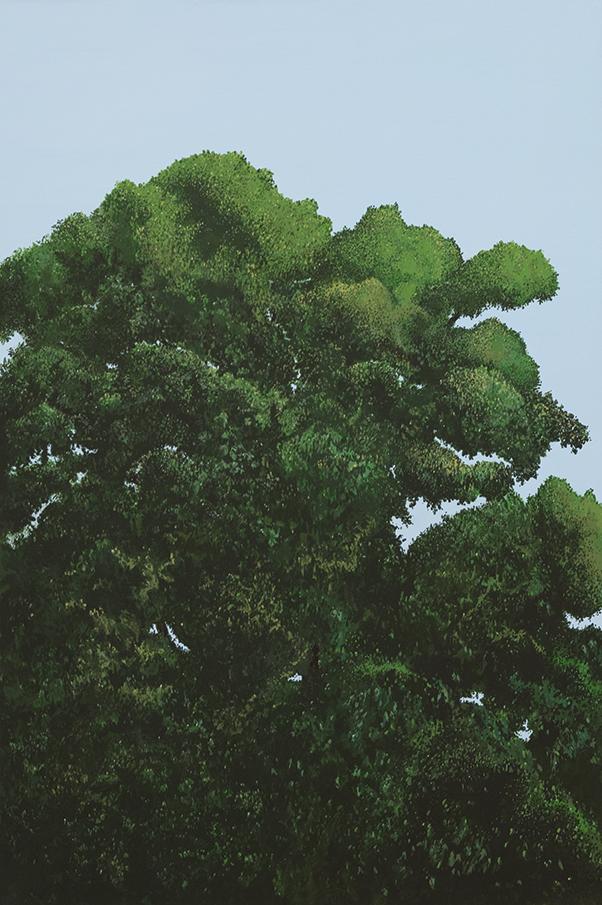Treepresentations-3.jpg