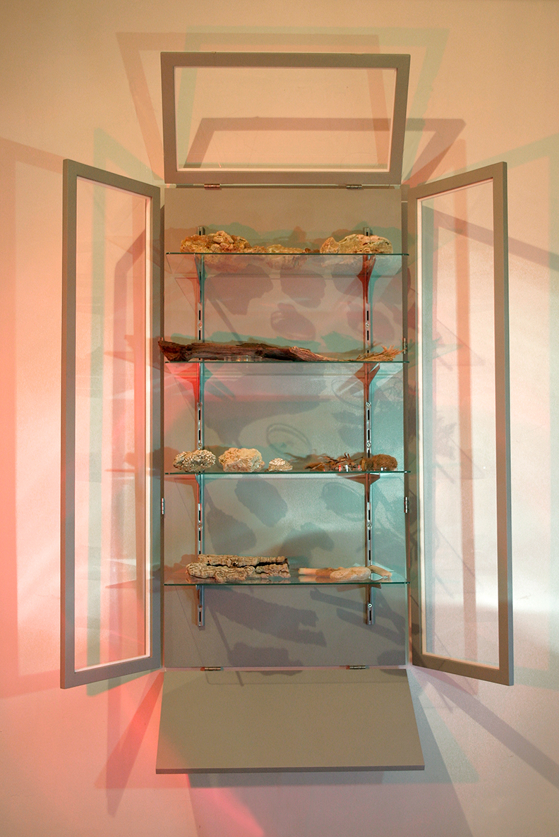 RT-O  (open RTO)  Wood, perspex, glass, metal shelves, collection of found objects.