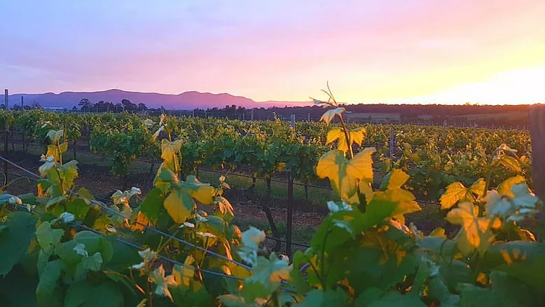 Imagine - Imagine a place where you gaze over rolling vineyards as the sun sets over the mountains. Where comfort and style meet five-star luxury. And where good old-fashioned hospitality makes you feel like you're at home.LEARN MORE ABOUT US →