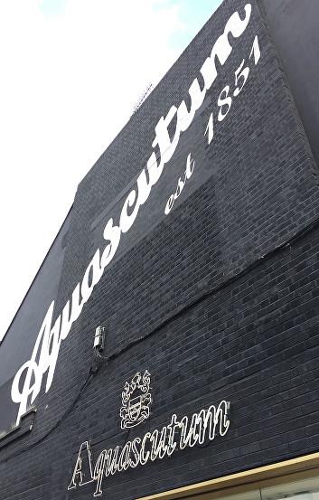 Hackney Walk Outlets East London.jpg