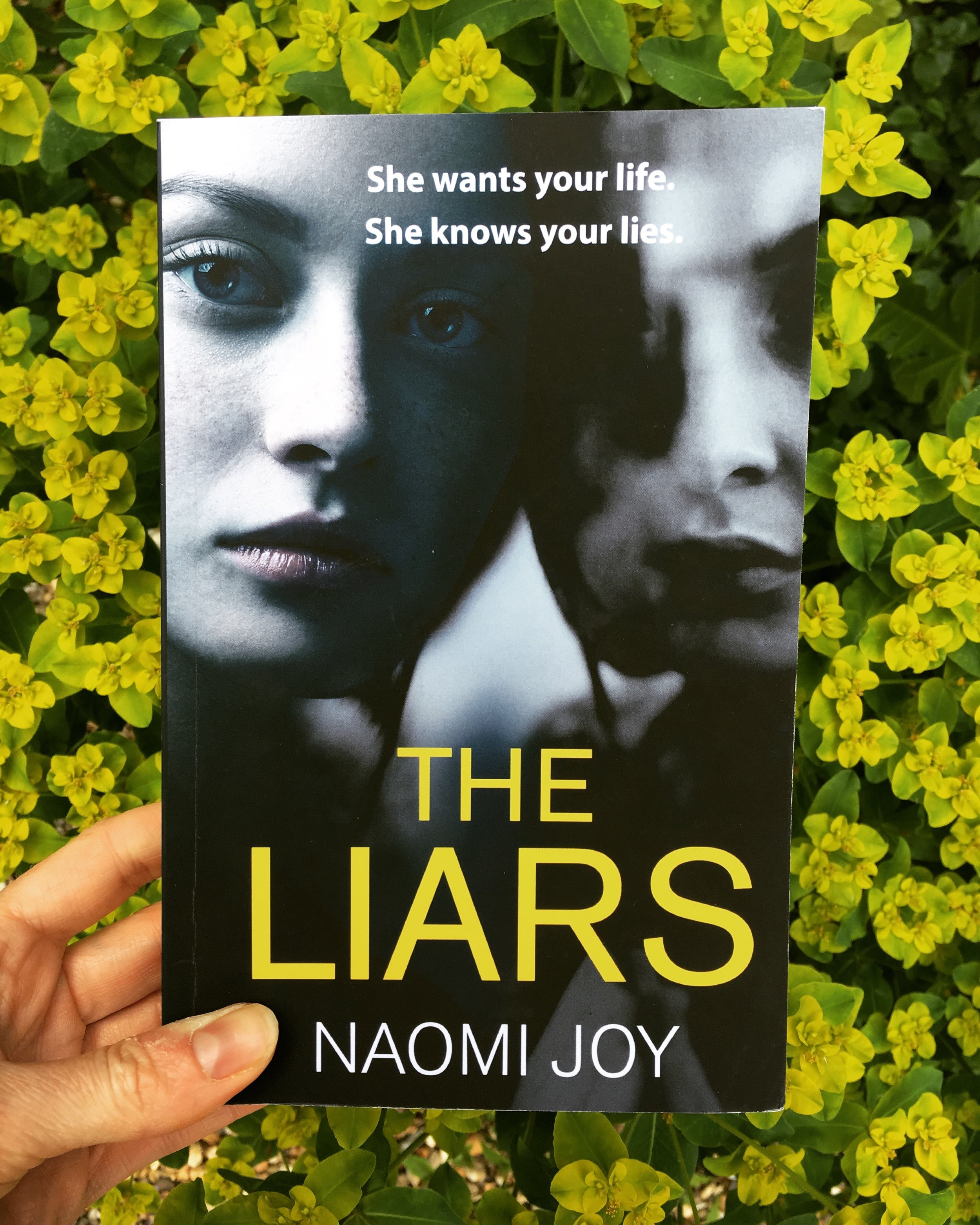 The Liars by Naomi Joy.JPG