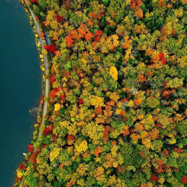 l'automne dans les laurentides / autumn in the laurentians 📷@piiilouuu ・・・ Je vous laisse le soin de légender.