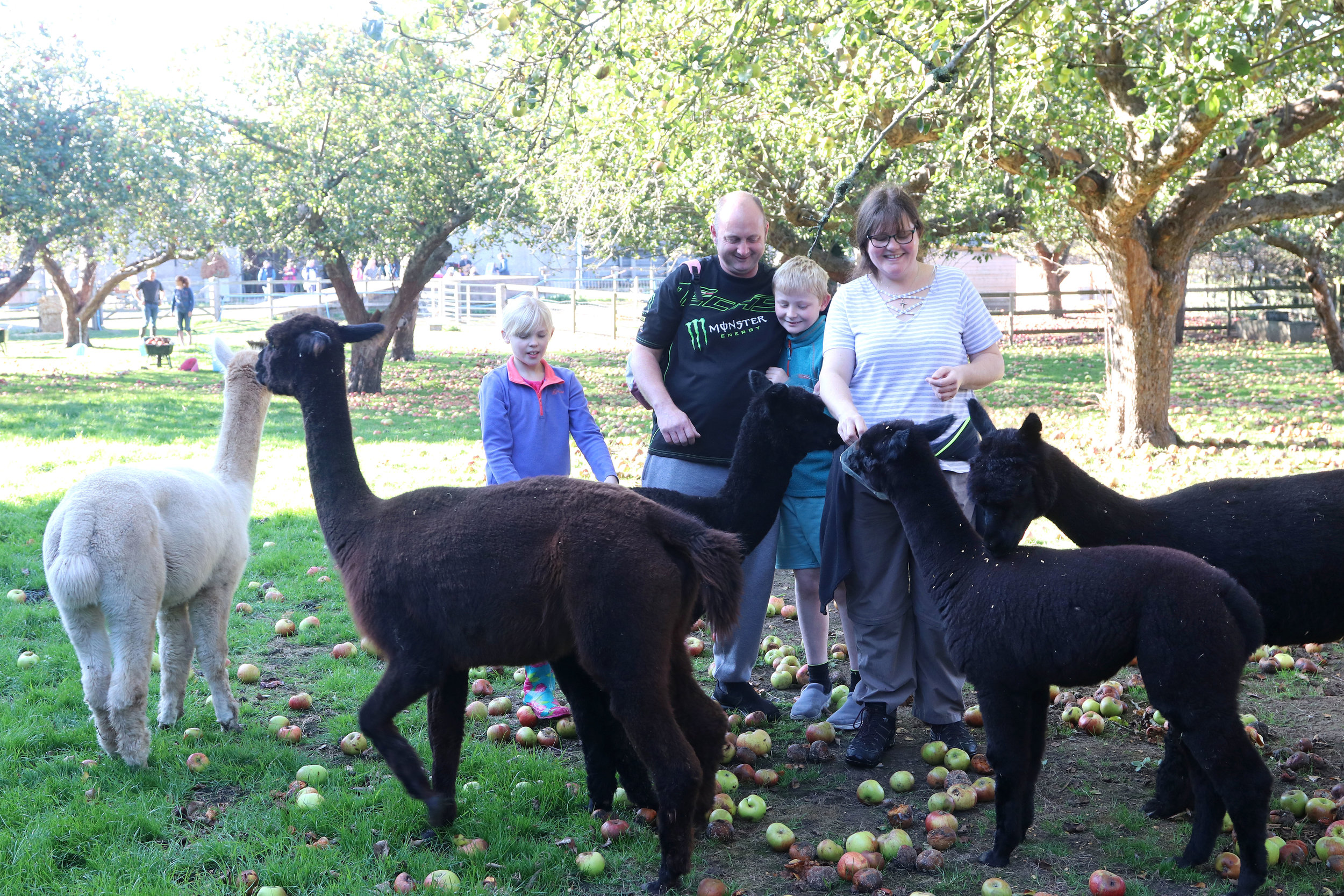 hall-farm-eastoft-for-families